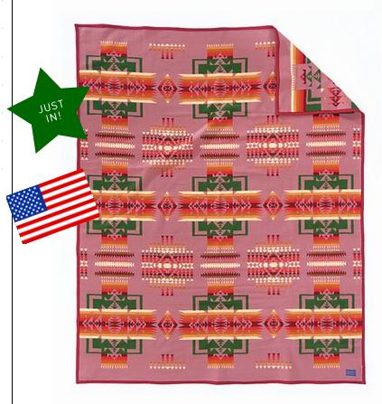 Pendleton muchacho baby blanket - rose - $80